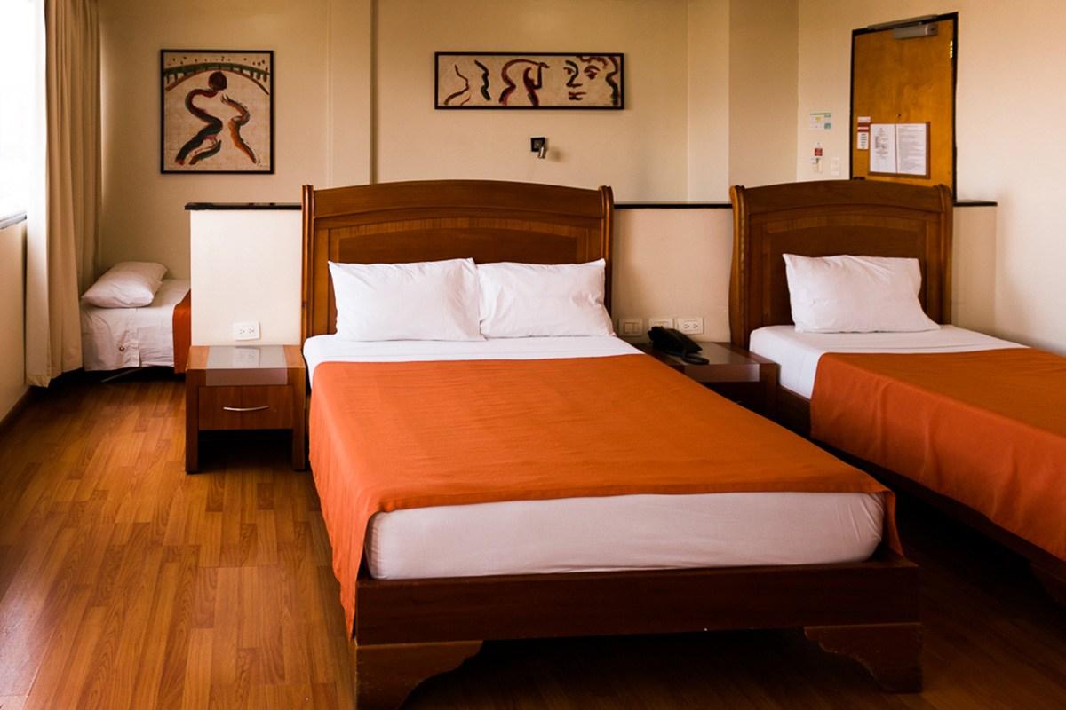 Hotel los leones